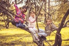 Bambini attivi in parco Fotografie Stock