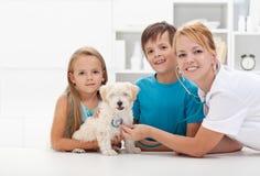 Bambini che catturano il loro animale domestico al veterinario Immagine Stock