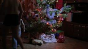 Bambini che cercano i regali sotto l'albero di Natale archivi video