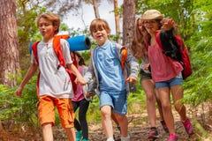 Bambini che corrono nella foresta che si tiene per mano insieme Immagine Stock