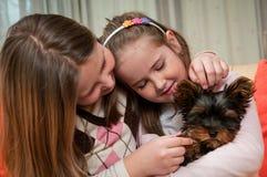 Bambini che giocano con il cane fotografie stock libere da diritti