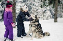 Bambini che giocano con un cane nell'orario invernale Immagine Stock Libera da Diritti