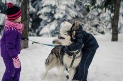 Bambini che giocano con un cane nell'orario invernale Fotografia Stock Libera da Diritti