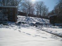 Bambini che giocano nella neve Immagine Stock Libera da Diritti