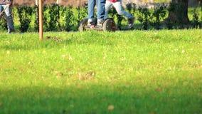 Bambini che guidano i gyroscooters nel parco di autunno video d archivio