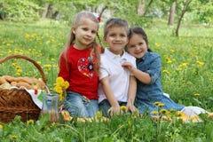 Bambini che hanno picnic fra il giacimento del dente di leone immagini stock