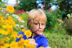 Bambini che imparano - fiori d'esplorazione del ragazzino con la lente d'ingrandimento fotografie stock
