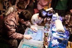 Bambini che pescano i pesci nel mercato di strada locale, Taiwan fotografia stock libera da diritti