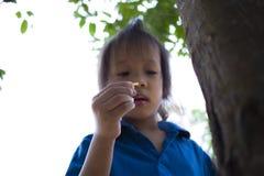 Bambini che provano alimentando un pezzo di alimento alla formica, il bambino adorabile dell'Asia che tiene un alimento e provare immagine stock