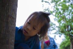 Bambini che provano alimentando un pezzo di alimento alla formica, il bambino adorabile dell'Asia che tiene un alimento e provare fotografia stock