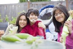 Bambini che sbucciano buccia fuori dalle spighe del granoturco Fotografia Stock