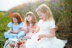 Bambini che selezionano ciliegia su un campo Ciliege della scelta dei bambini di estate immagine stock