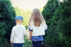 Bambini che si tengono per mano camminata attraverso gli alberi sempreverdi Immagine Stock