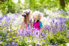 Bambini con i fiori di campanula, strumenti di giardino Fotografie Stock