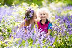 Bambini con i fiori di campanula, strumenti di giardino Fotografia Stock