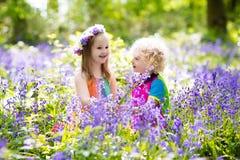 Bambini con i fiori di campanula, strumenti di giardino Immagine Stock