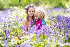 Bambini con i fiori di campanula, strumenti di giardino Immagini Stock