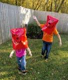 Bambini con la scheda Immagine Stock