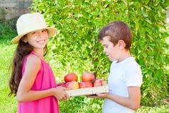 Bambini con le mele immagini stock libere da diritti