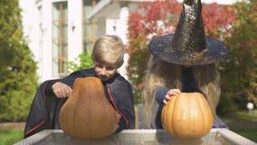 Bambini in costumi di travestimento che scolpiscono la presa-o-lanterna della zucca per Halloween stock footage