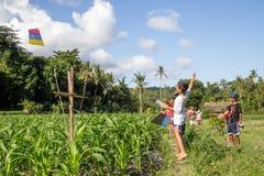 Bambini di balinese con gli aquiloni Fotografia Stock