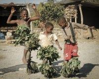 Bambini di dancing dello Swazi Fotografia Stock Libera da Diritti