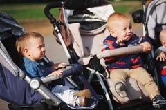 Bambini divertenti che si siedono in passeggiatori in parco Immagini Stock Libere da Diritti