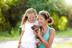 Bambini ed animali da allevamento Bambino con il maiale del bambino allo zoo Immagini Stock Libere da Diritti