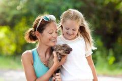 Bambini ed animali da allevamento Bambino con il maiale del bambino allo zoo Fotografie Stock Libere da Diritti