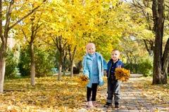 Bambini in giovane età che raccolgono i fogli di autunno Immagini Stock
