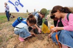 Bambini israeliani che celebrano l'alimento ebreo di festa del Tu Bishvat Fotografie Stock Libere da Diritti