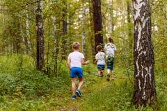 Bambini in magliette bianche che camminano nel legno di estate immagine stock