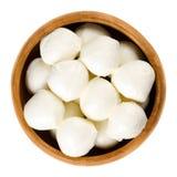 Bambini mozzarella in wooden bowl over white Royalty Free Stock Photos