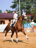 Bambini nello sport equestre Fotografia Stock Libera da Diritti