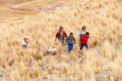 Bambini peruviani che corrono, Perù Fotografie Stock Libere da Diritti