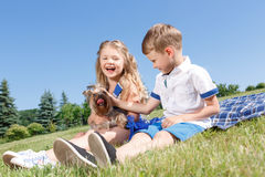 Bambini positivi che giocano con il cane Immagine Stock Libera da Diritti