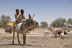 Bambini su un asino in Africa fotografie stock libere da diritti