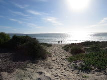 Bambini su una spiaggia di inverno di pomeriggio Immagine Stock