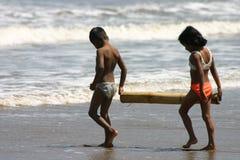 Bambini sul faggio Fotografia Stock