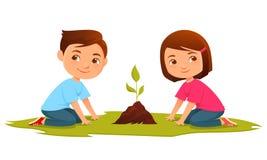 Bambini svegli che coltivano una pianta Immagine Stock