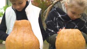 Bambini svegli che fanno le lanterne della zucca per il partito di Halloween, giorno freddo dell'autunno, gioia archivi video