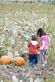 Bambini in una zona della zucca Fotografia Stock