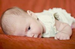 Bambino Fotografia Stock