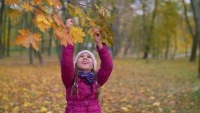 Bambino adorabile che raggiunge ramo dell'albero in autunno archivi video