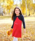 Bambino allegro della bambina con le foglie di acero gialle in autunno Immagine Stock Libera da Diritti