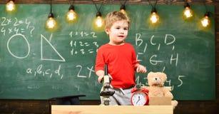 Bambino, allievo sul fronte calmo vicino al microscopio Concetto entusiasta dell'allievo Scherzi il ragazzo vicino al microscopio Immagini Stock Libere da Diritti
