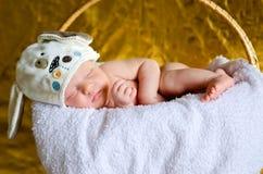 Bambino appena nato in un cestino immagini stock libere da diritti