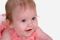 Bambino attento in buona salute Fotografie Stock