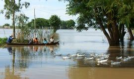 Bambino, barca di fila, anatra, campagna vietnamita Immagine Stock