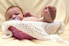 Bambino in cestino Immagine Stock